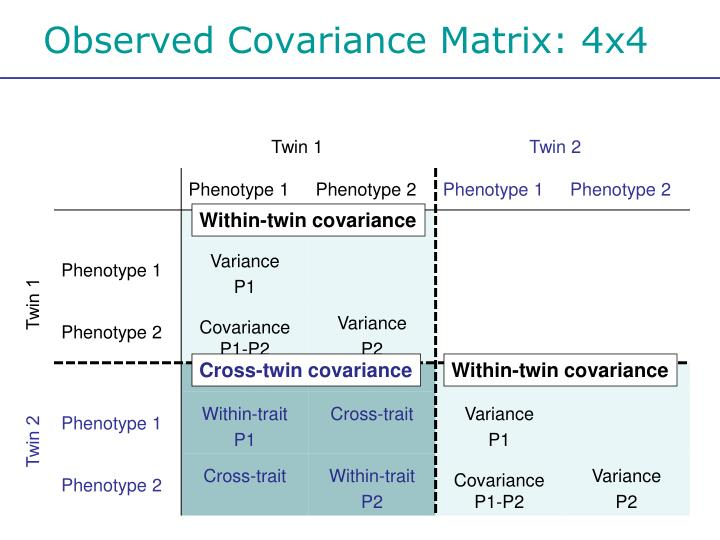Observed Covariance Matrix: 4x4