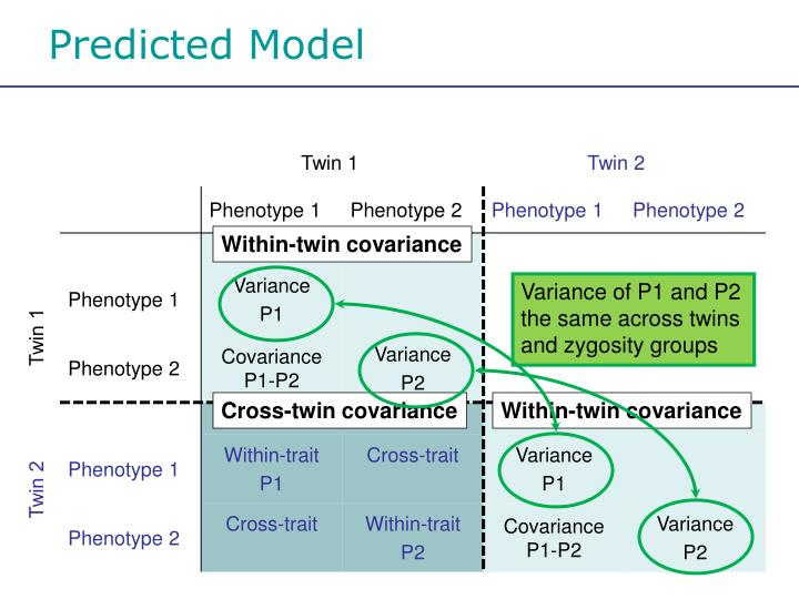 Predicted Model