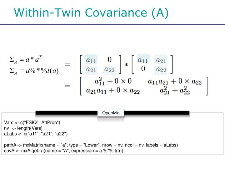 Within-Twin Covariance (A)
