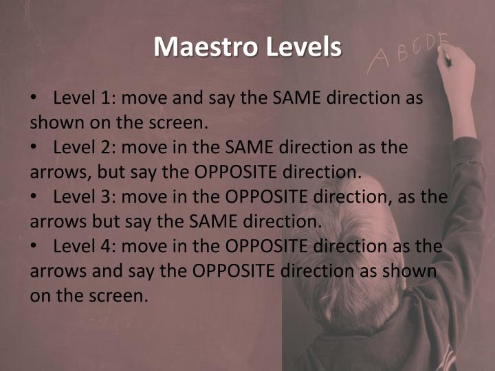 Maestro Levels
