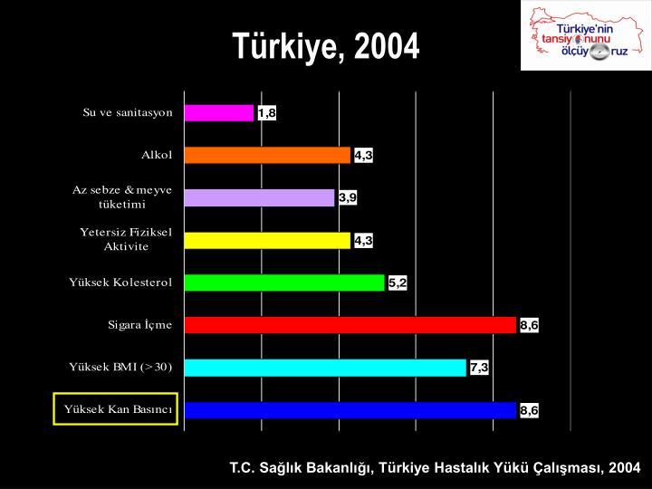 Türkiye, 2004