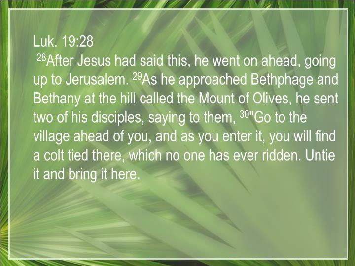 Luk. 19:28