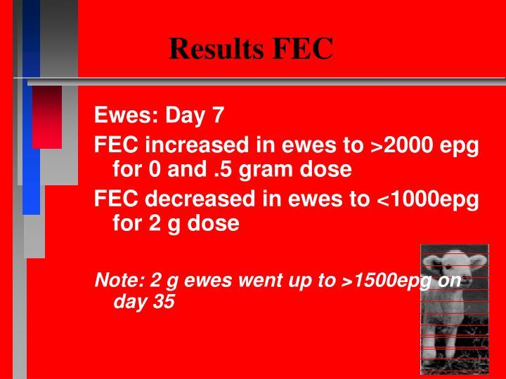 Results FEC