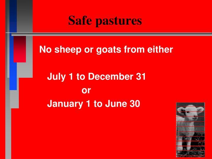 Safe pastures