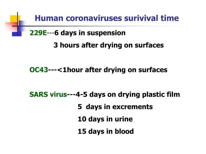 Human coronaviruses surivival time