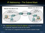 ip addressing the subnet mask1