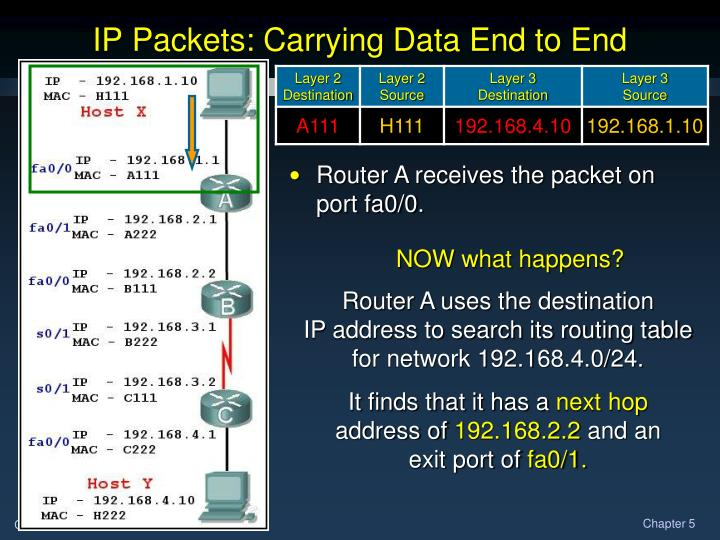 IP Packets: Carrying Data End to End