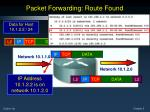 packet forwarding route found