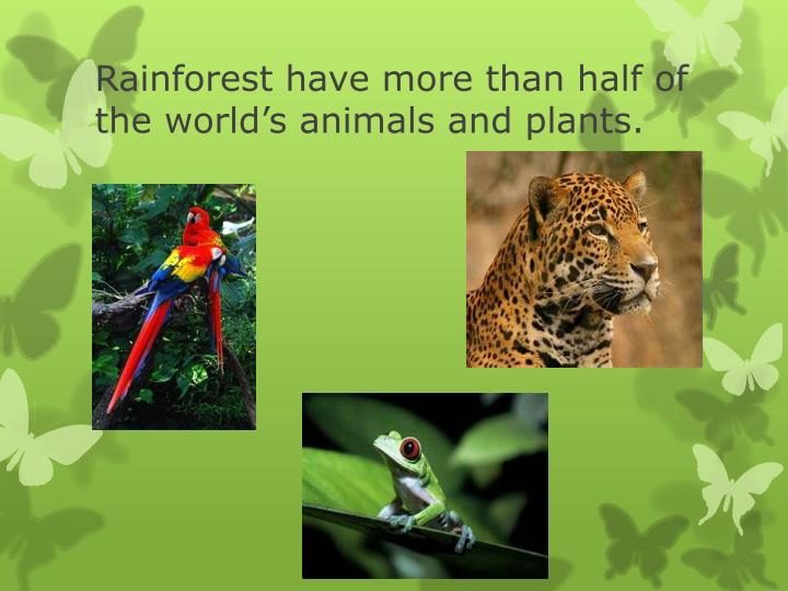 Rainforest have more than half of the world's animals and plants.