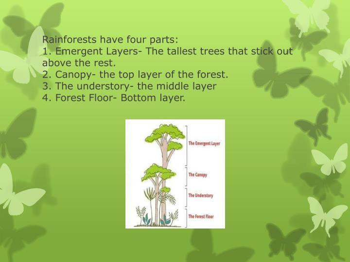 Rainforests have four parts: