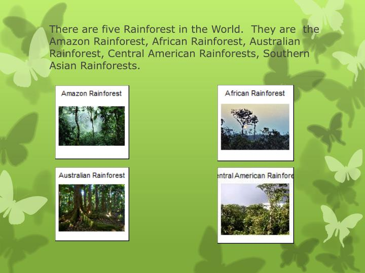 There are five Rainforest in the World.  They are  the Amazon Rainforest, African Rainforest, Australian Rainforest, Central American Rainforests, Southern Asian Rainforests.