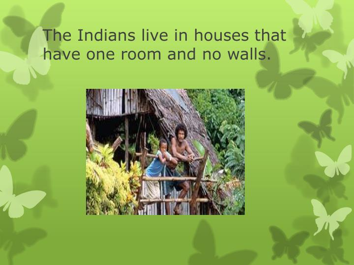 The Indians live in houses that have one room and no walls.