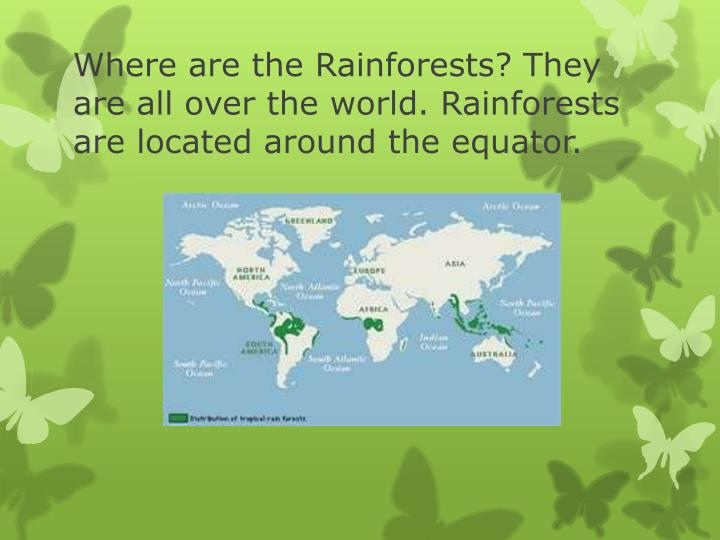 Where are the Rainforests? They are all over the world