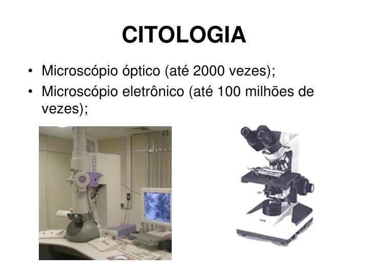 CITOLOGIA