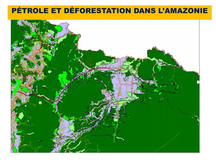PÉTROLE ET DÉFORESTATION DANS L'AMAZONIE