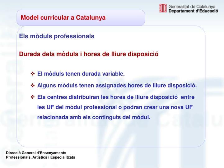Model curricular a Catalunya