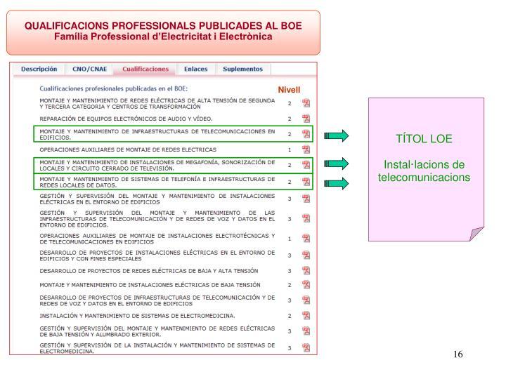 QUALIFICACIONS PROFESSIONALS PUBLICADES AL BOE