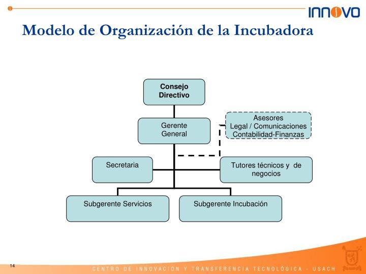 Modelo de Organización de la Incubadora