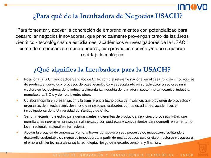 ¿Para qué de la Incubadora de Negocios USACH?
