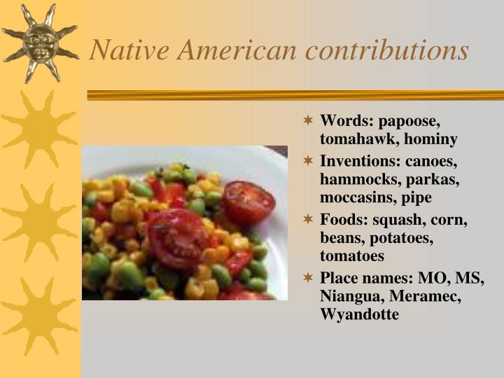Native American contributions