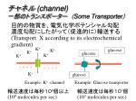 channel some transporter