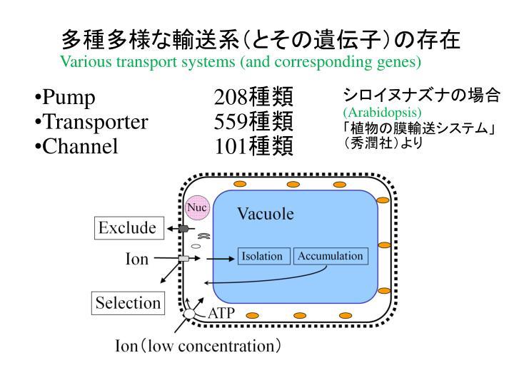 多種多様な輸送系(とその遺伝子)の存在