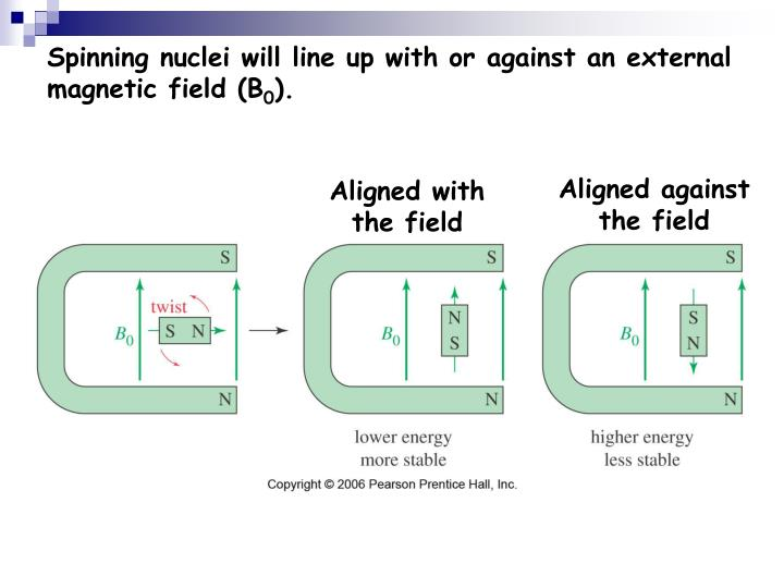 Spinning nuclei will line up with or against an external magnetic field (B