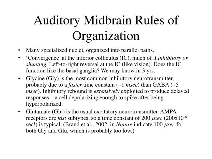 Auditory Midbrain Rules of Organization
