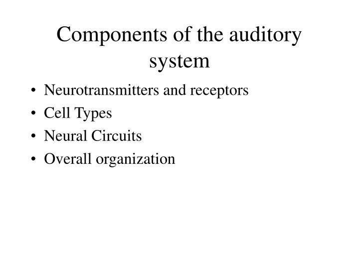 Components of the auditory system