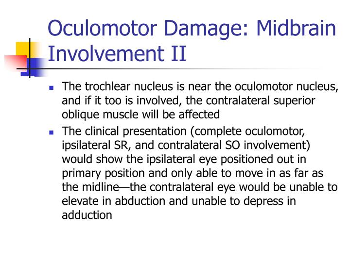 Oculomotor Damage: Midbrain Involvement II