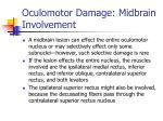 oculomotor damage midbrain involvement