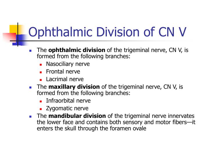 Ophthalmic Division of CN V