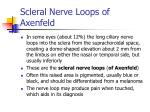 scleral nerve loops of axenfeld