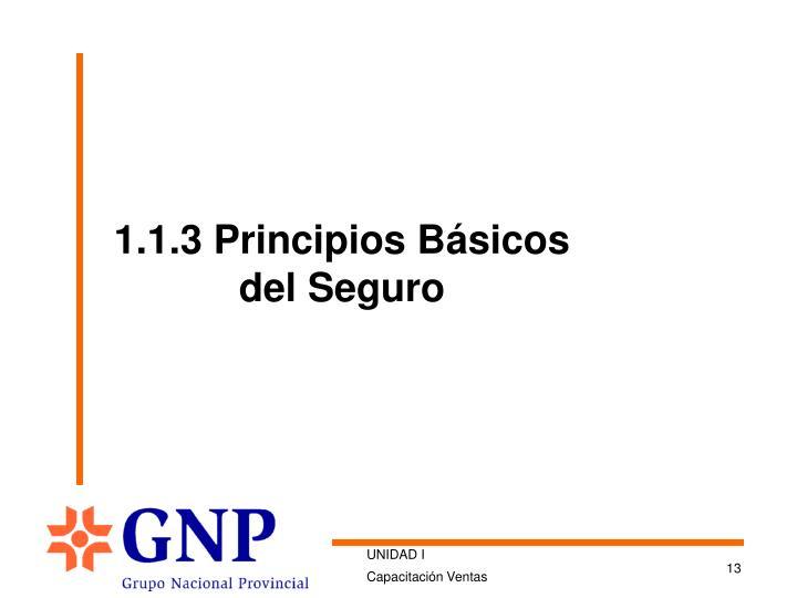 1.1.3 Principios Básicos