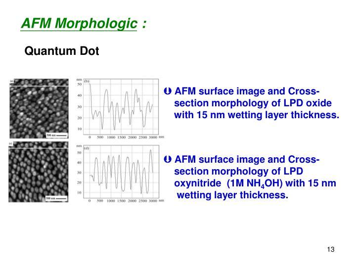 AFM Morphologic