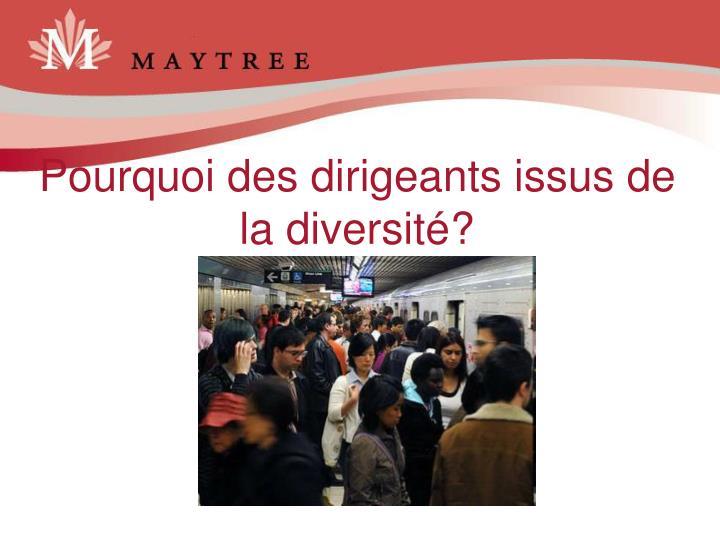 Pourquoi des dirigeants issus de la diversité?
