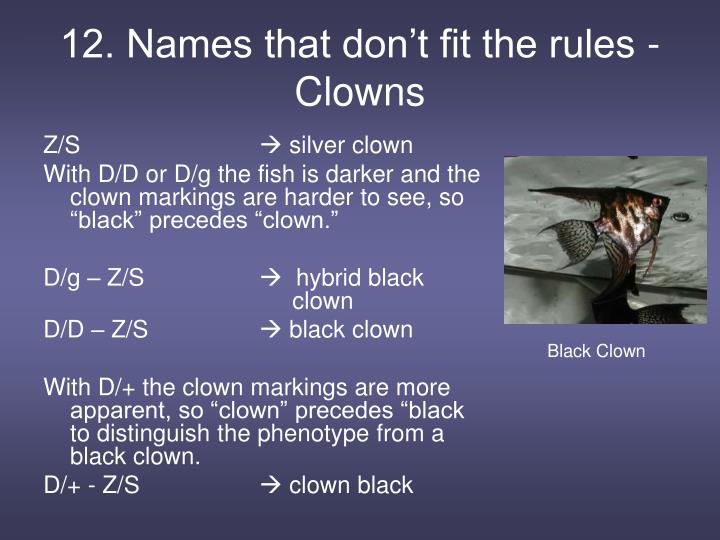 12. Names that don't fit the rules - Clowns