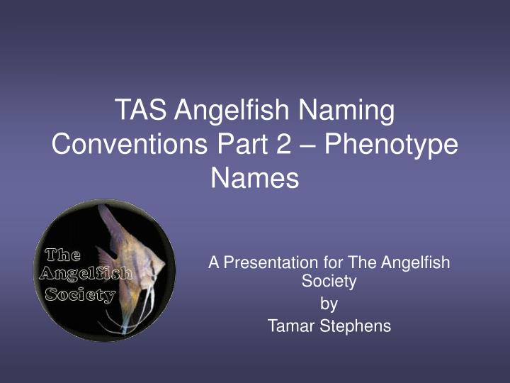 Tas angelfish naming conventions part 2 phenotype names