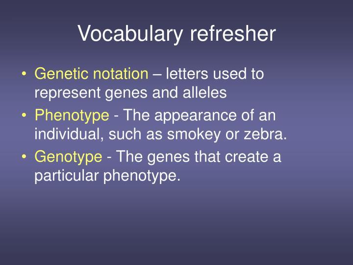 Vocabulary refresher