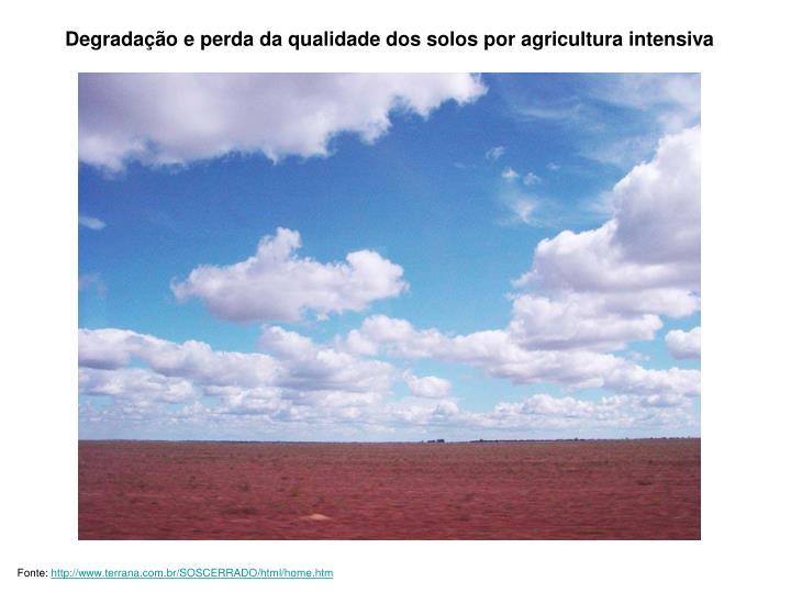 Degradação e perda da qualidade dos solos por agricultura intensiva