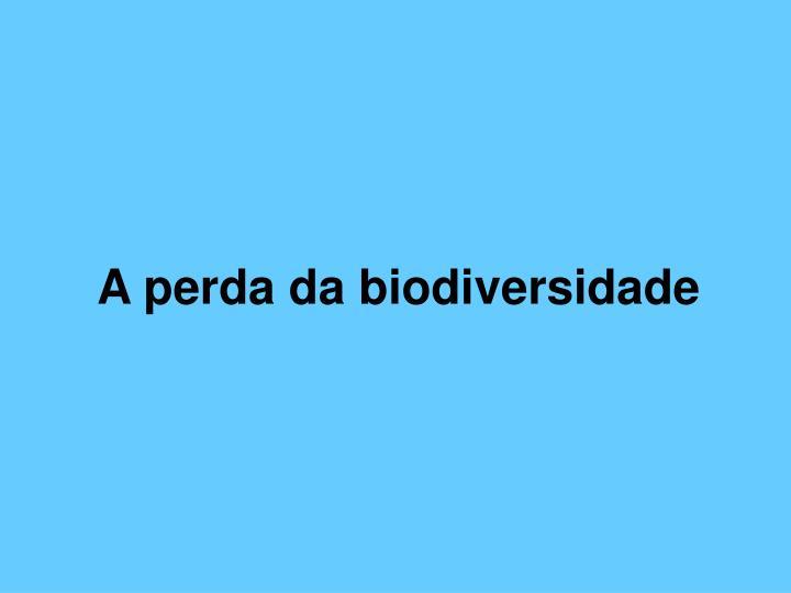 A perda da biodiversidade