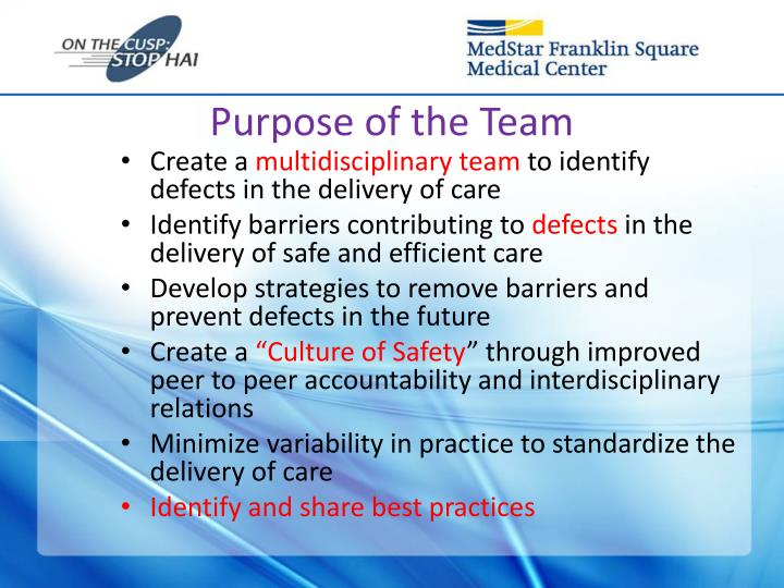 Purpose of the Team