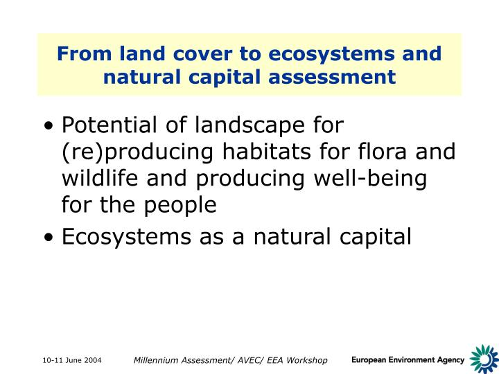 From land cover to ecosystems and natural capital assessment