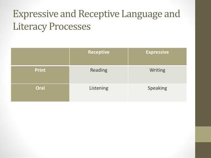 Expressive and Receptive Language and Literacy Processes