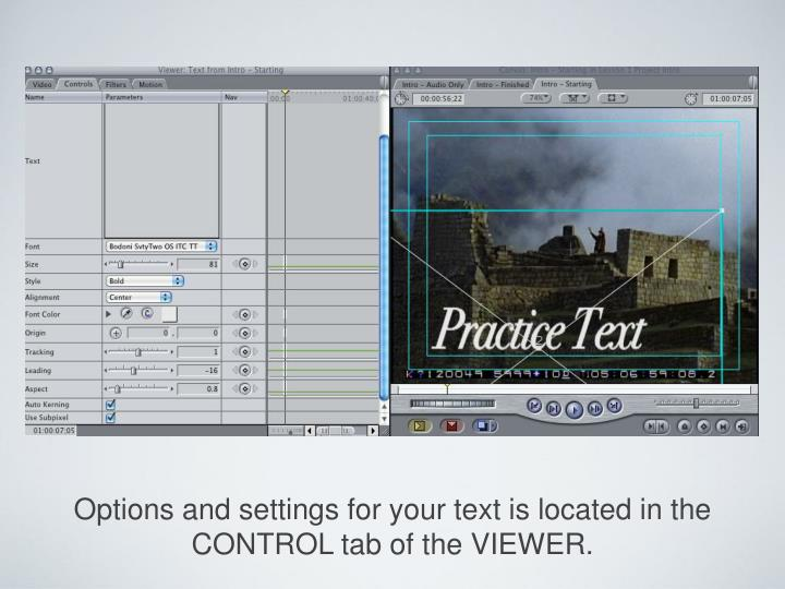 Options and settings for your text is located in the CONTROL tab of the VIEWER.