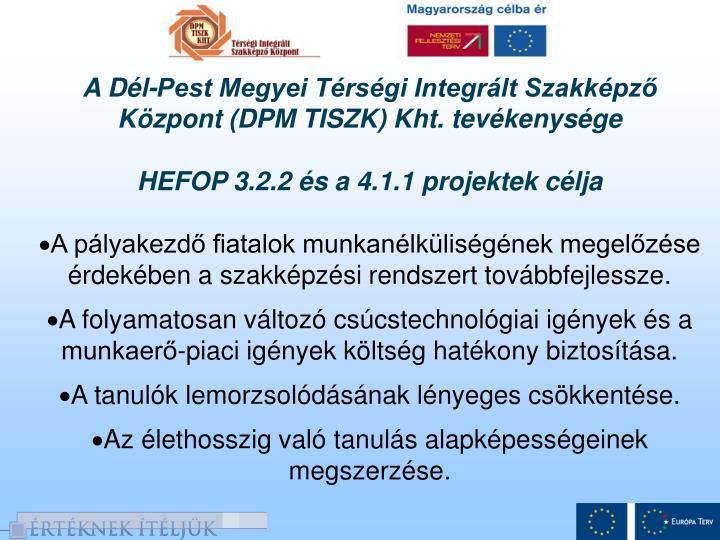 A Dél-Pest Megyei Térségi Integrált Szakképző Központ (DPM TISZK) Kht. tevékenysége