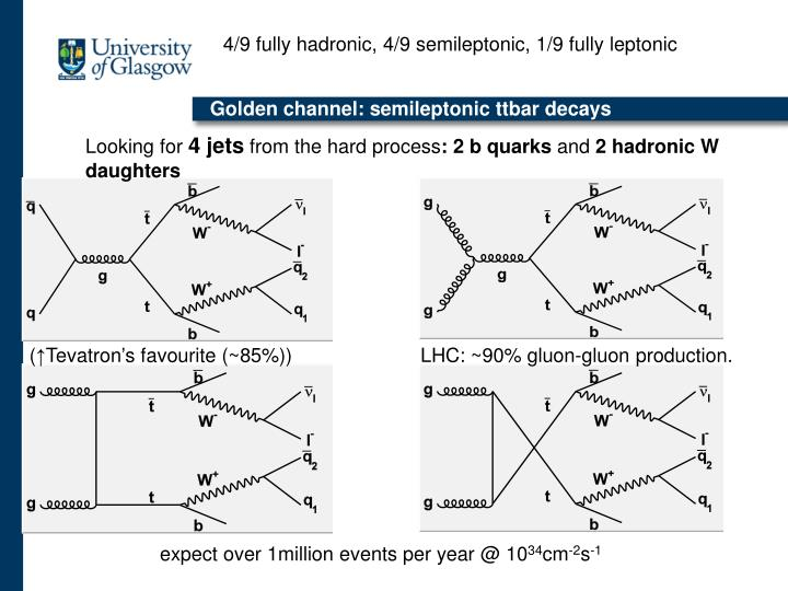 4/9 fully hadronic, 4/9 semileptonic, 1/9 fully leptonic