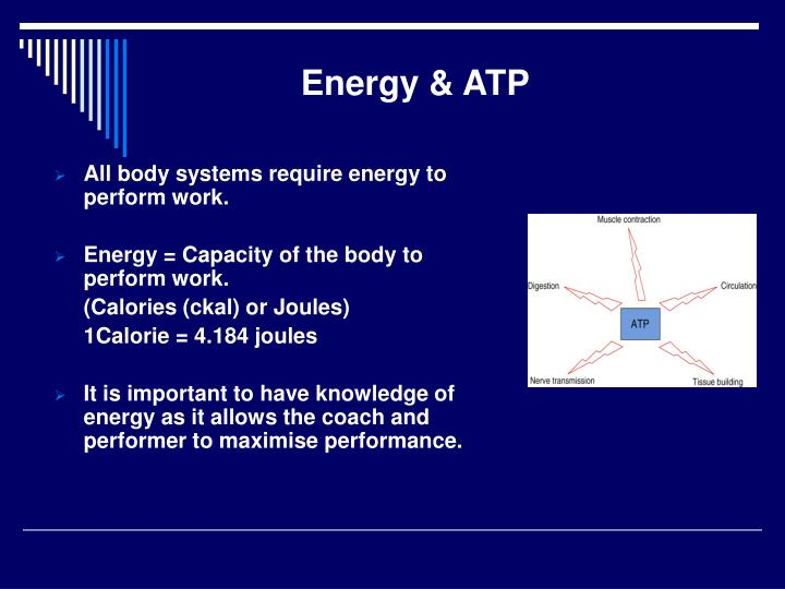 Energy & ATP