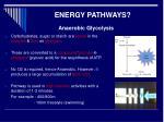 energy pathways1