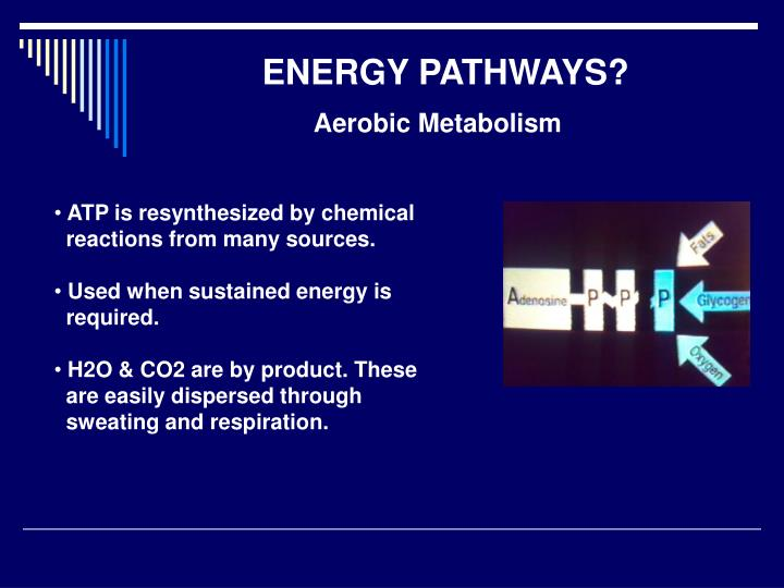 ENERGY PATHWAYS?